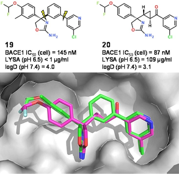 Original BACE1 inhibitor and the planar analogue