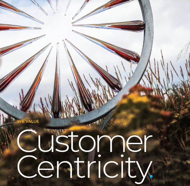 Customer centricity value
